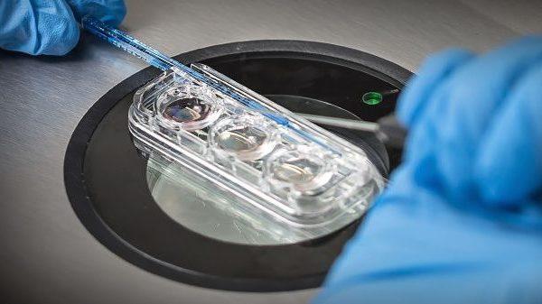 Можливість вибирати найздоровіші ембріони для запліднення в пробірці